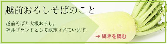 越前おろしそばのこと。越前そばと大根おろし。福井ブランドとして認められています。続きを読む。