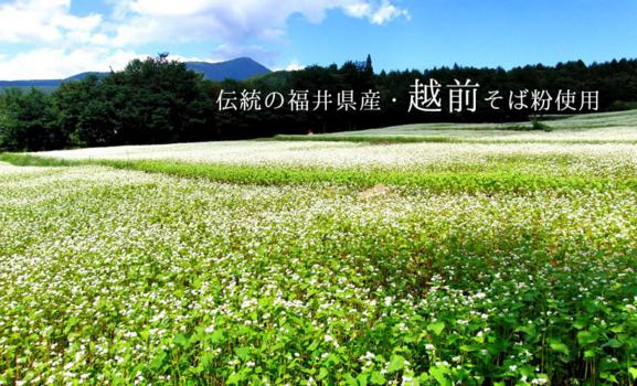 伝統の福井県産 越前そば粉使用